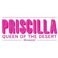 Slow Burn Theatre Co. presents PRISCILLA QUEEN OF THE DESERT