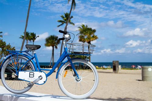 B Ocean Beach Cruiser