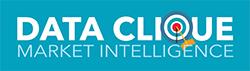 Data Clique LLC