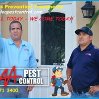 AAA Pest Control, Ants control services