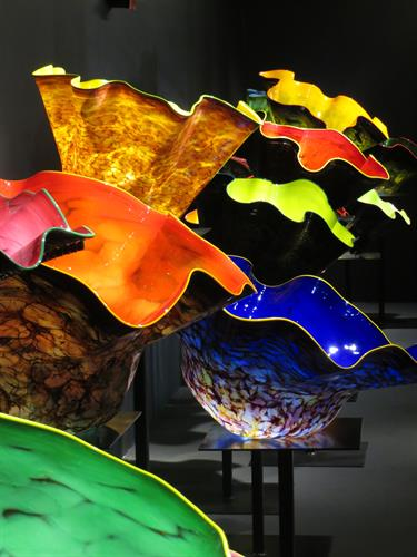 Chihuly Macchia Forest at WMODA