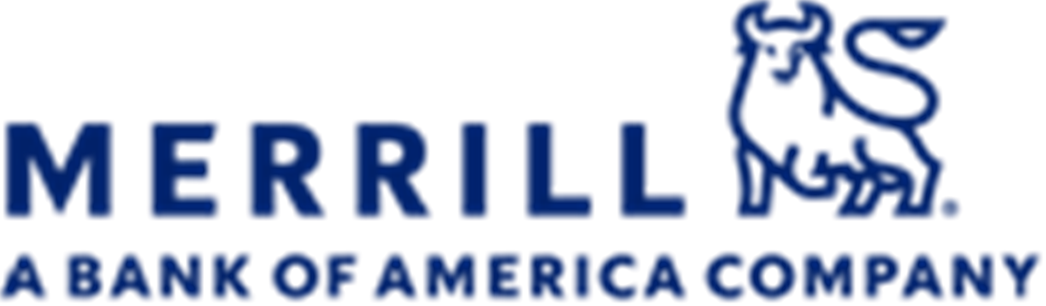 Merrill Lynch - Juan Carlos Bastida