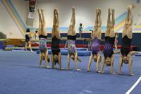 Gallery Image Girls_Inc._Gymnastics.JPG