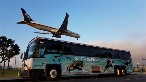 Santa Barbara Zoo Wrapped Airbus!