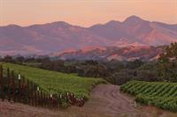 Sunset in Santa Ynez.