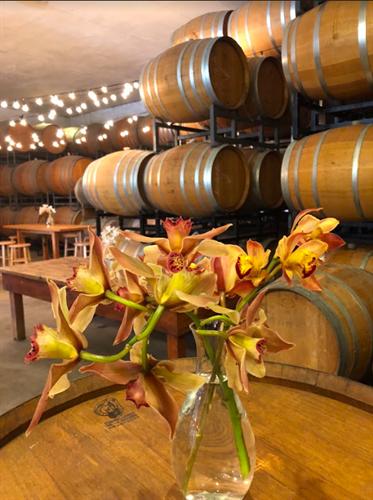 Santa Barbara Winery Barrel Room- open to public