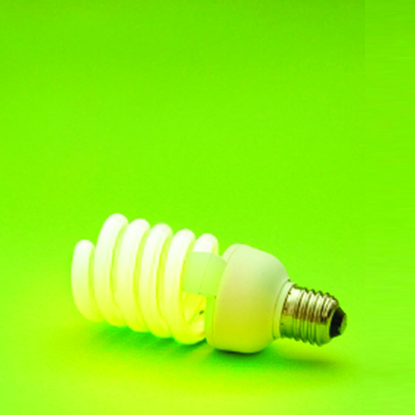 Small Businesses Save Big with Energy Efficiency