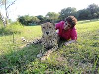 Taking risk to make work and life amazing (me in South Africa with a live full grown cheetah)
