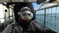 Taking risk to make work and life amazing (me in Cape Town South Africa on a shark cage dive)