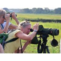 Nature Center Teams with Inn at Mystic to Offer 'Women in the Woods'