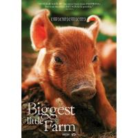 New Film 'Biggest Little Farm' Plays at Mystic Luxury Cinemas Beginning May 23