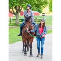 Appointment of new Chair and Trustees at High Hopes Therapeutic Riding, Inc.