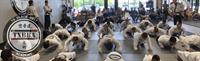 Tx. Black Belt Academy - Cleburne