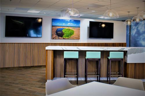 Cafe's and collaborative areas are essential in today's commercial settings