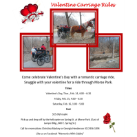 Valentine Carriage Rides