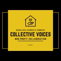 Collective Voices Non-Profit Network