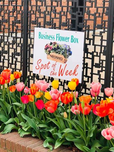 Flower Box Spot of the Week