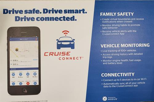 Vehicle Monitoring & Diagnostics - For your family or business