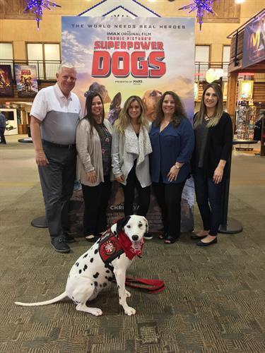 IMAX Film Superpower Dogs