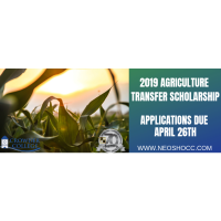 2019 Agriculture Transfer Scholarship