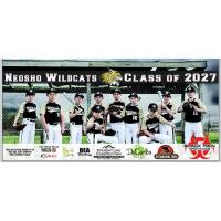 10U Neosho Wildcats Take Home 2nd Place in Missouri USSSA AAA State Championship