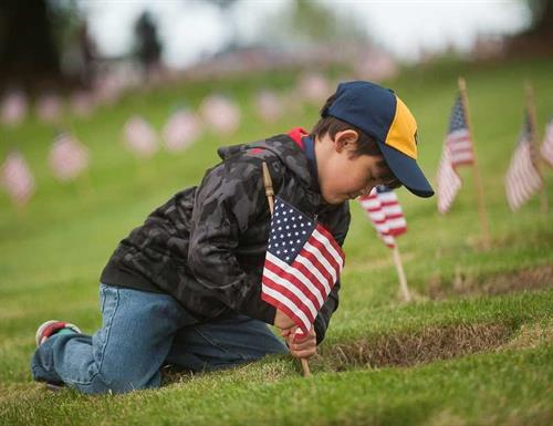 Cub Scout Placing Flags for Veterans Day