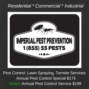 Imperial Pest Prevention specials