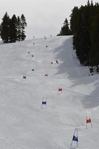 Giant Slalom Ski & Snowboard Championship