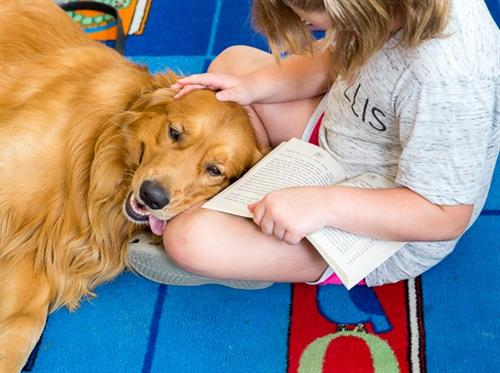 StoryTime with Go Team Therapy Dogs