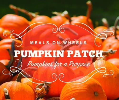 Meals on Wheels Pumpkin Patch