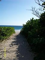 Gallery Image beachcomber_facility_beachwalkway.jpg