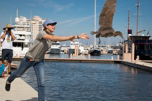 LagoonFest Bird Release