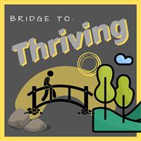 Come Alive LLC / Bridge To Thriving