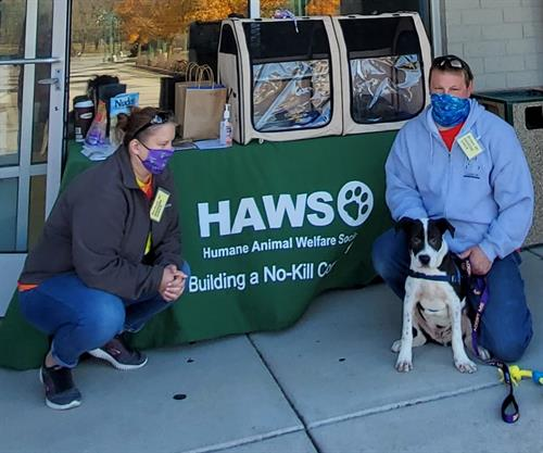 Have our mobile adoption team come out to your event or fundraiser!