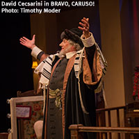 David Cecsarini in BRAVO, CARUSO!, 2015