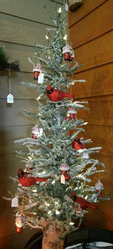 Gallery Image cardinal_tree.jpg