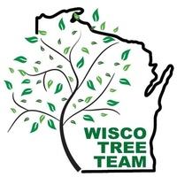 Wisco Tree Team, LLC