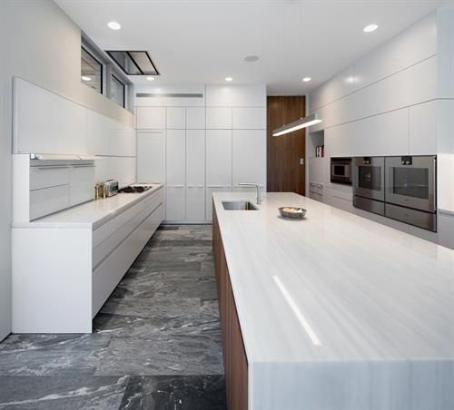 Clark Hill Residence Kitchen