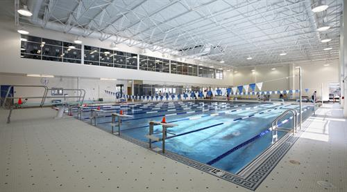 Lynch Van Otterloo YMCA Pool