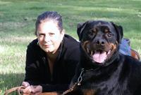 My & my late Bruce, CGC, ATT & Herding