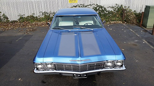 SS Striped Impala