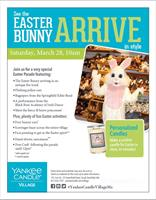Easter Bunny Arrival!