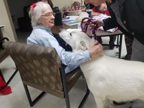 Clients enjoy a visit from a therapy dog.