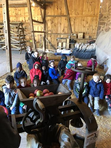 Lincoln Elementary Kindergarten students learning about the lifecycle of apples at Weaver's Orchard.