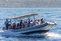 New High-speed, Zodiac-style Catamaran Fast Cat
