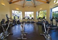 Our state-of-the-art cardio equipment includes Life Fitness treadmills, ellipticals, recumbent and spin bikes, and stair masters. Natural lighting creates an energizing ambiance.
