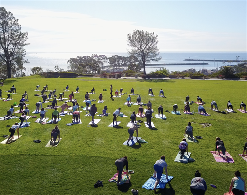 iHeartYoga in the Park - Everyday 10 AM Lantern Bay Park