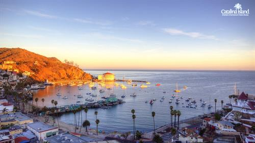Gallery Image Morning_Catalina.jpg