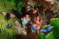 Family Adventure!