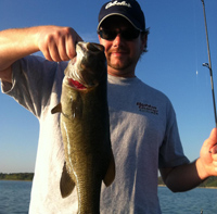 Brown bass abound in Table Rock Lake.
